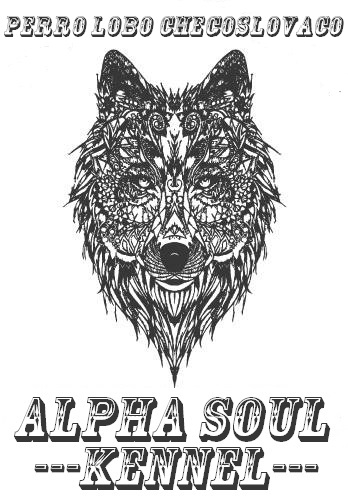 ALPHA SOUL KENNEL